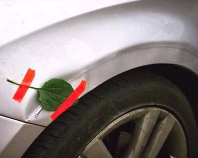 leaf and tape