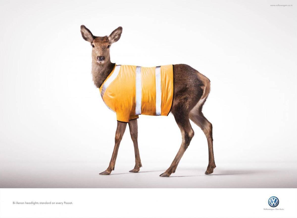 volkswagen-volkswagen-animal-deer